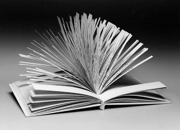 Cent mille milliards de poèmes... A10