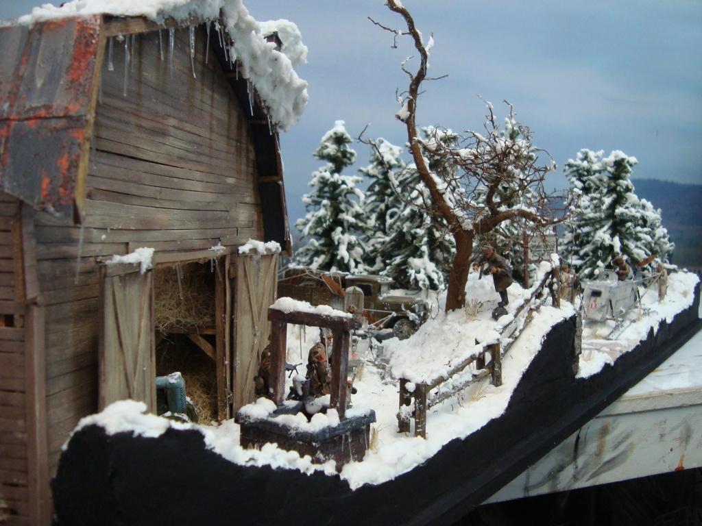 Les ravages de l'hiver - Page 3 Hiver_10