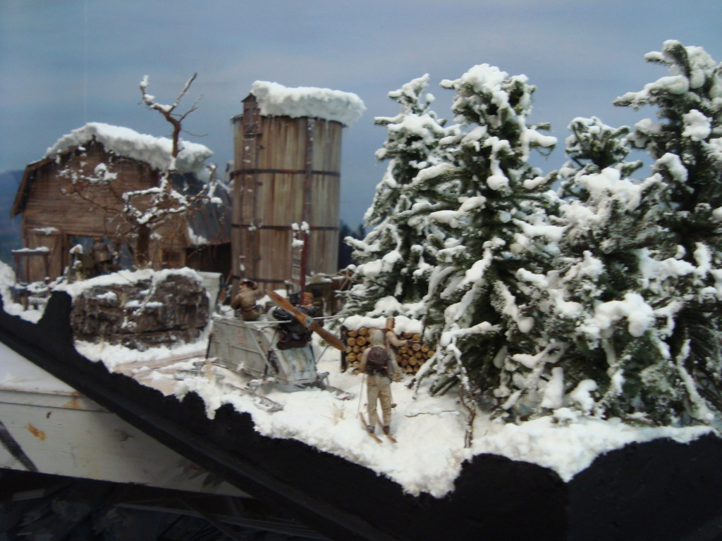 Les ravages de l'hiver - Page 3 Hiver_11