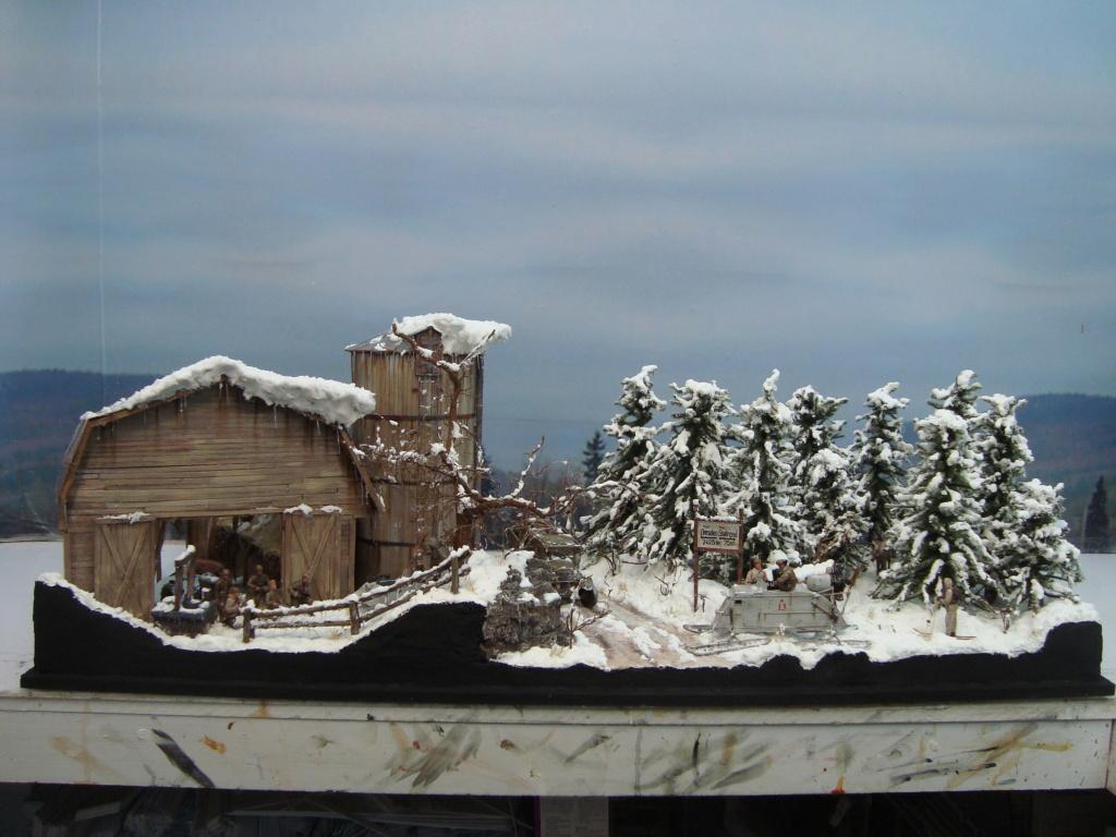 Les ravages de l'hiver - Page 3 Hiver_12