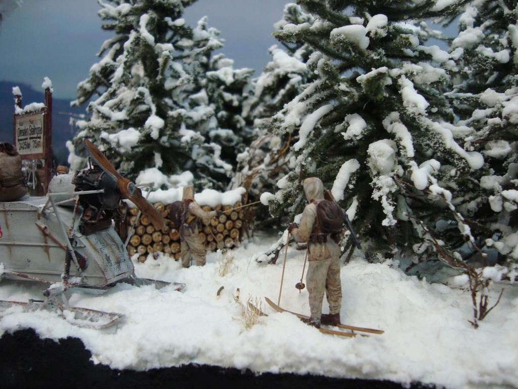 Les ravages de l'hiver - Page 3 Hiver_13