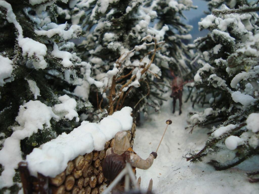 Les ravages de l'hiver - Page 3 Hiver_18