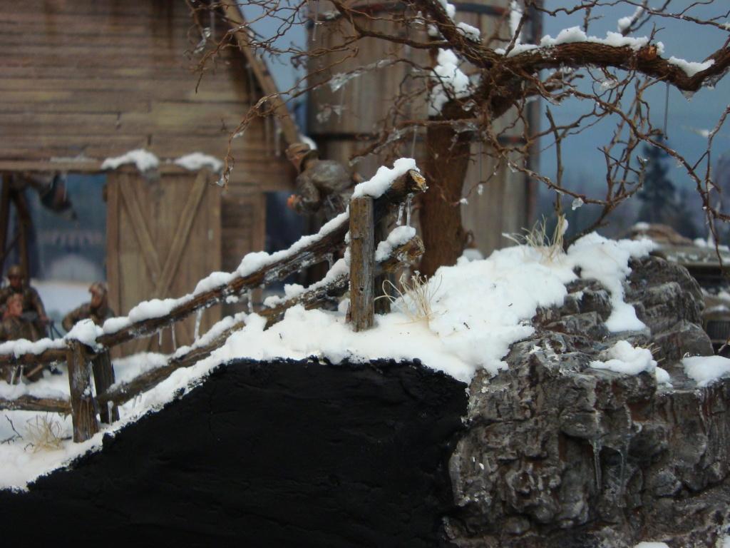 Les ravages de l'hiver - Page 3 Hiver_19
