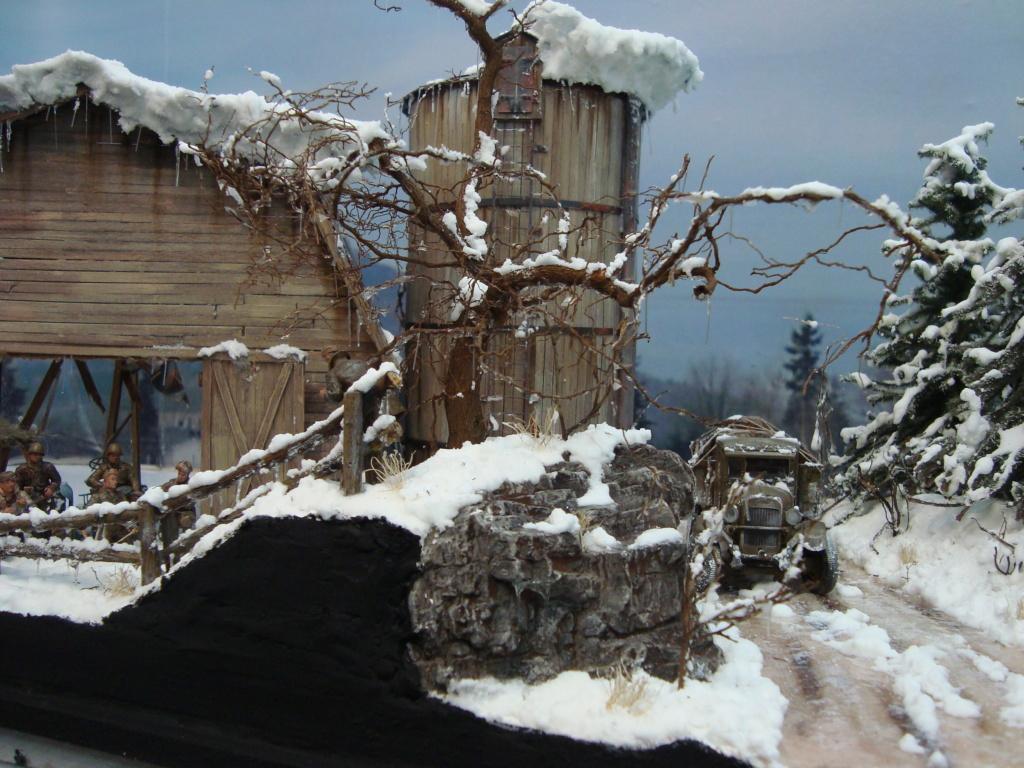 Les ravages de l'hiver - Page 3 Hiver_21