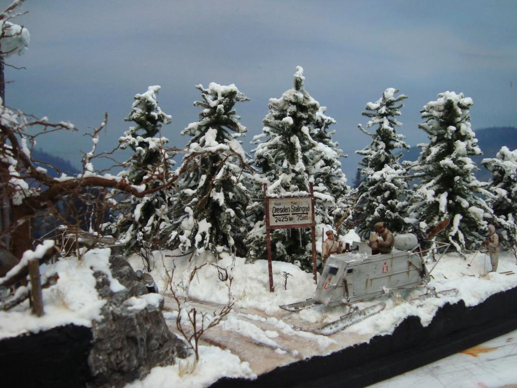 Les ravages de l'hiver - Page 3 Hiver_30