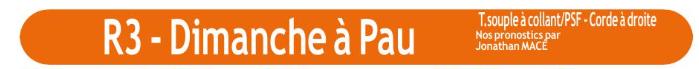 Autres courses PMU du dimanche 19 janvier 2020 0741