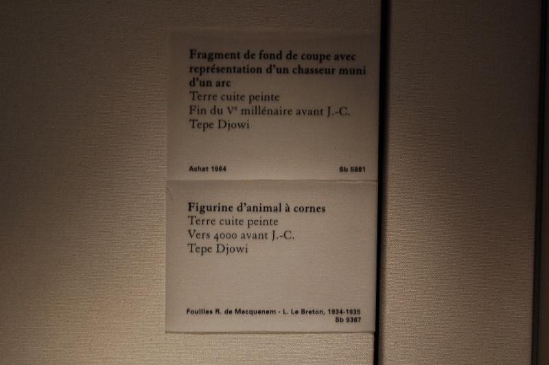 Petite sortie au Louvre, dans le quartier du Levant, Mésopotamie, Iran, Assyrie  Dsc_0088