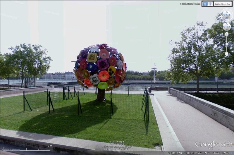 L'arbre à Fleurs Place Antonin Poncet à Lyon France Arbre_11