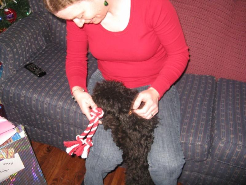 Muffy at Christmas 0315