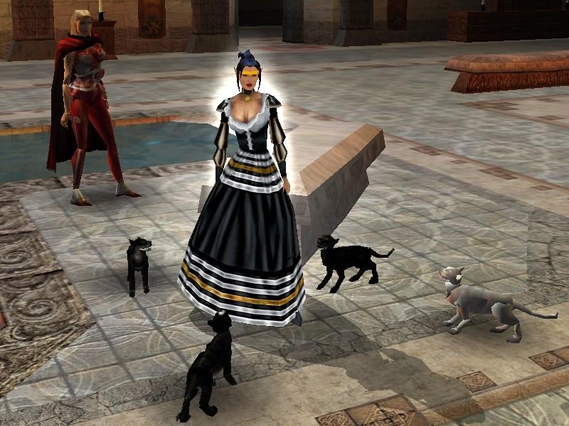 Small Domestic Pet Summons Aenea_10