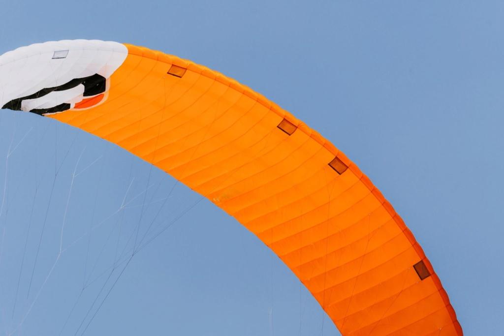 Nouveau kite de Race Ozone R1V4  10375010