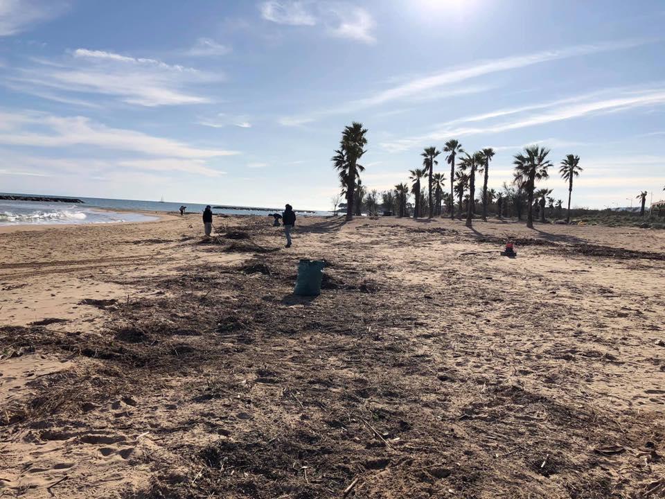 Un geste pour ta plage, ton spot : Sea Rider Eco Team 78217910