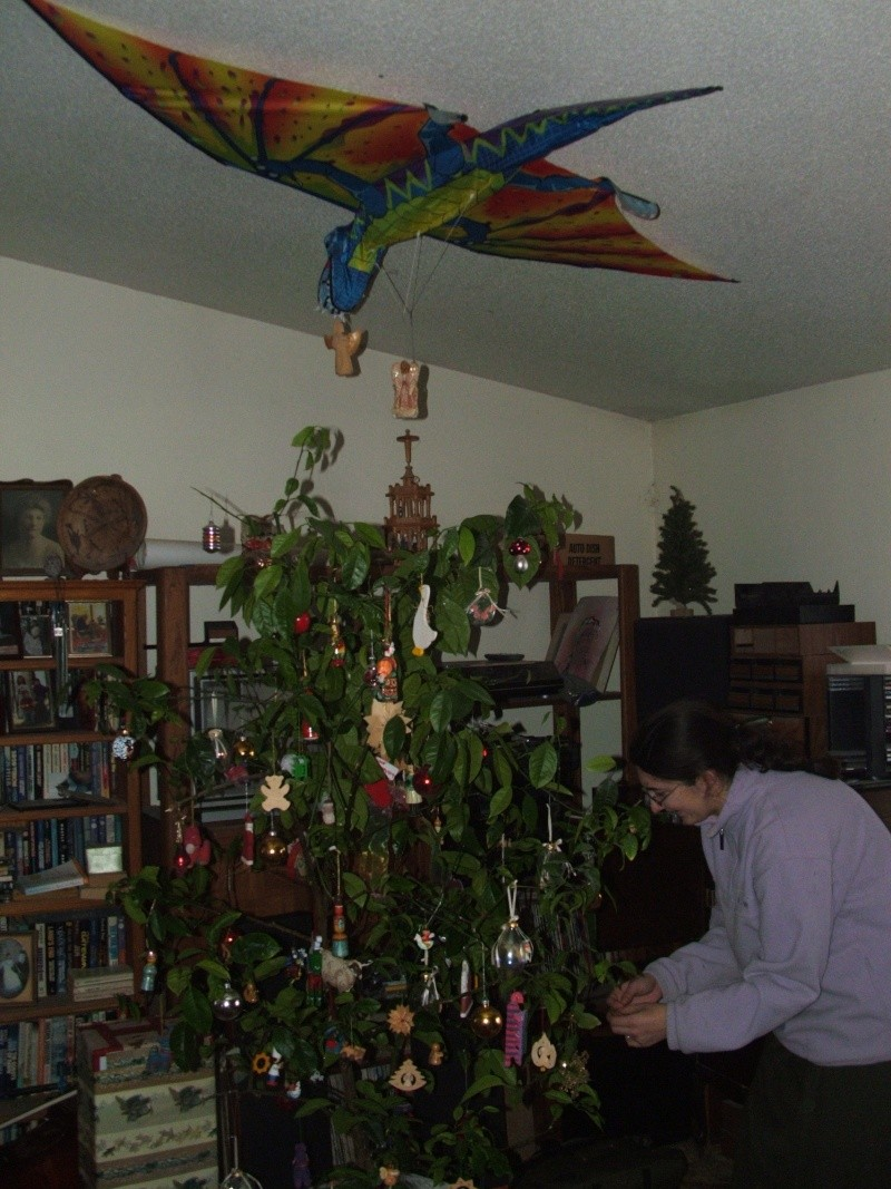Monthly Avatar Theme: December 2012 Fiona_10
