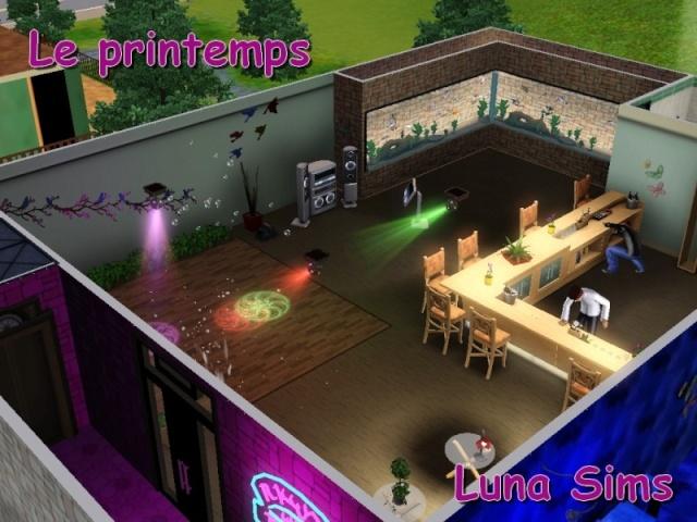Galerie de Luna-Sims 41010