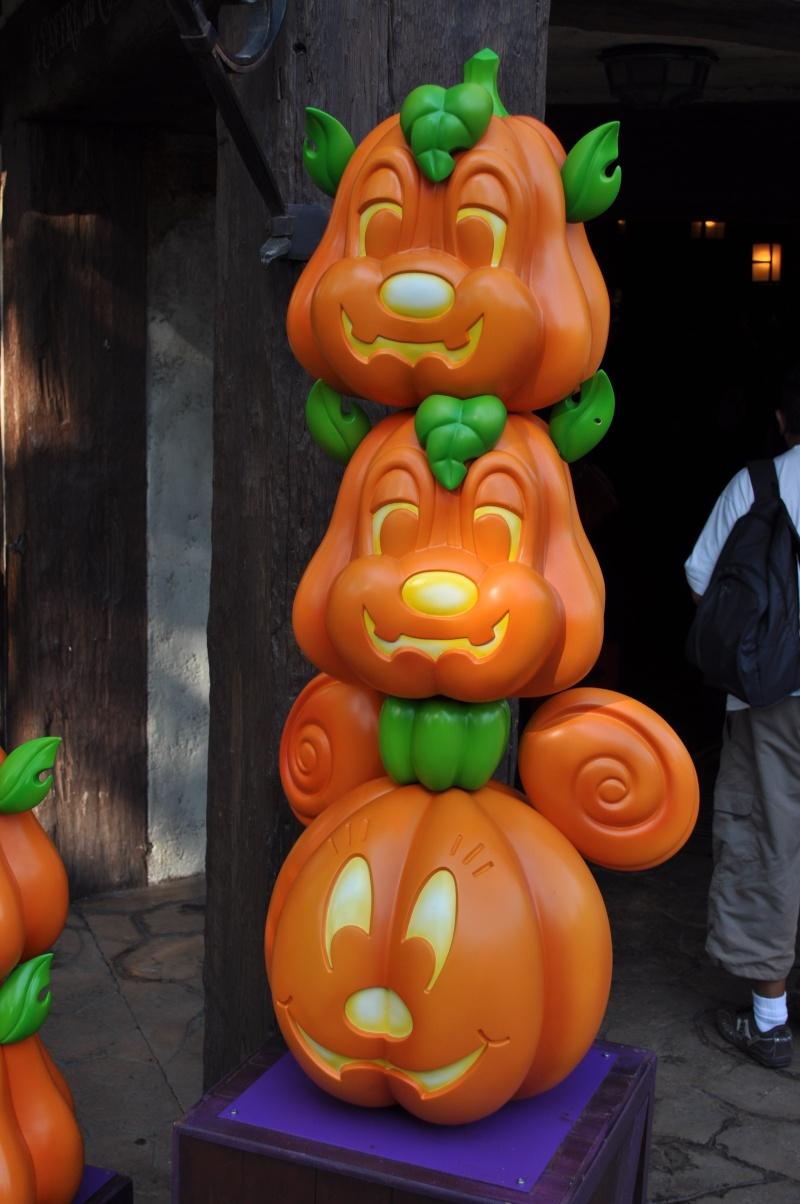 [TR] Disneyland Paris, 15 ans après..... 3 jours / 2 nuits  au Castle Club vue Fantasia Gardens - Page 7 Dsc_0019