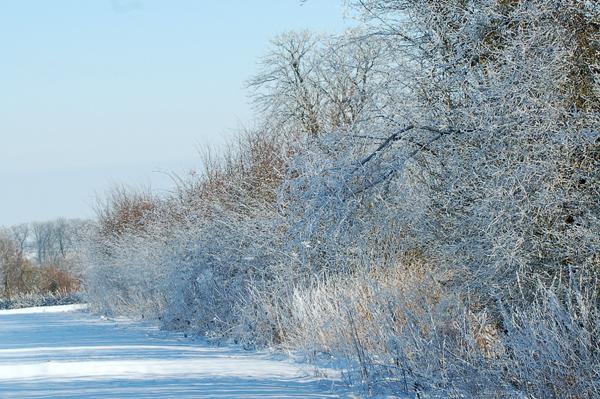 vos ambiances hivernales !!! c'est parti !! - Page 3 210