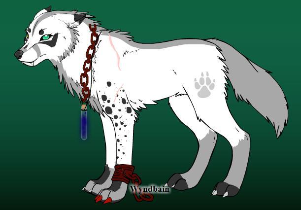 Kahira - Die einsame Kämpferin.. Kahira10