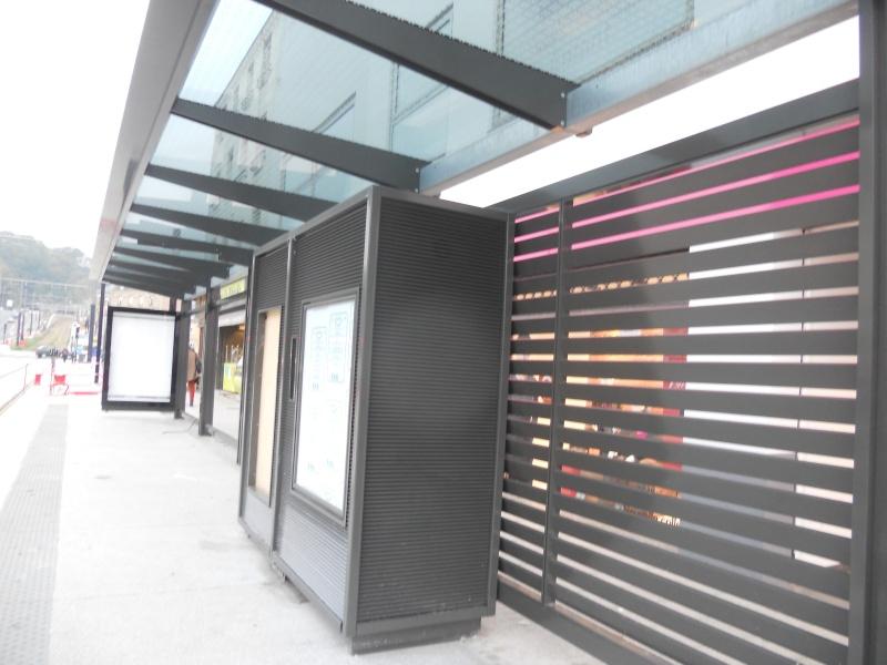 2012-10-24 Balade : Parc Holker rue Anatole France Dscn9214