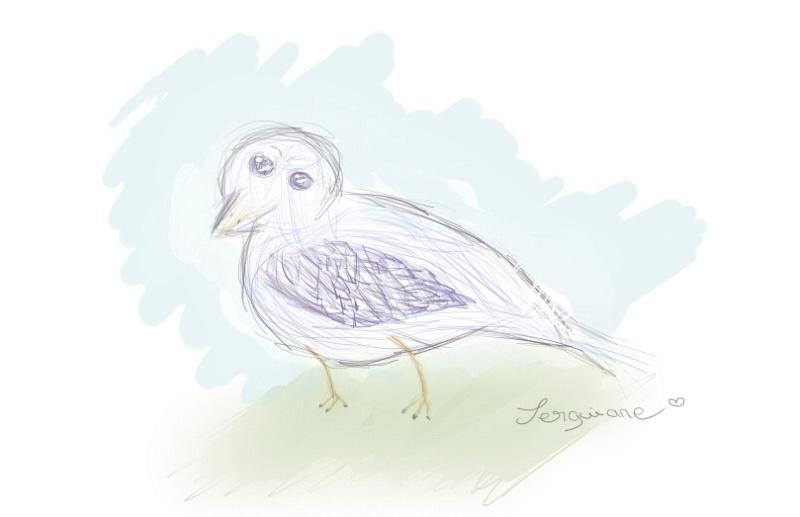 [Creations Diverses] Serguiiiane ☺ Oiseau10