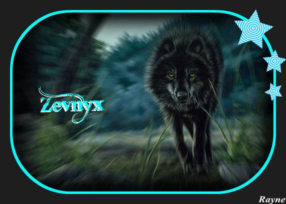 Zevnyx's Avvie Black_10