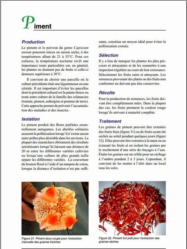 Comment produire et conserver ses propres semences de légumes. Captur11