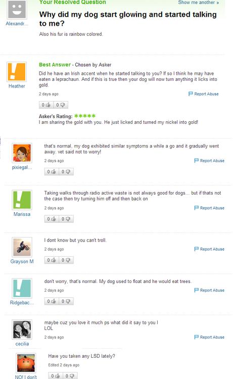 Yahoo! Answers Tumblr11