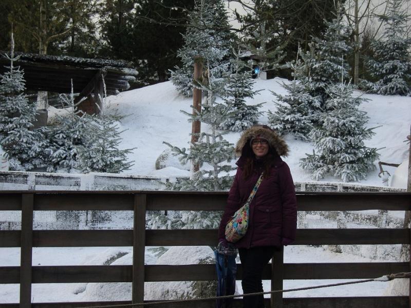 Séjour du 16 au 18 décembre 2012 au séquoia lodge + 1 journée magique - Page 2 Sn151012