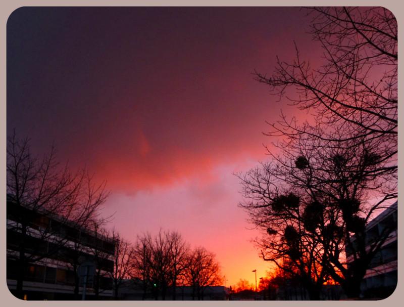 L'année 2012 en photos ! 22_mar10