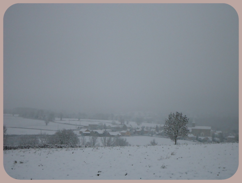 L'année 2012 en photos ! 31_jan11