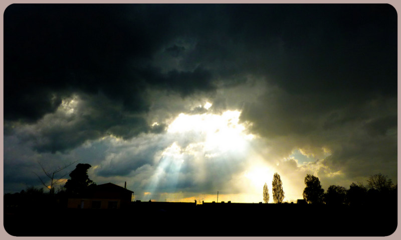 L'année 2012 en photos ! 6_avri11