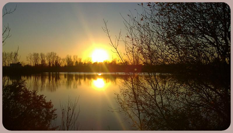 L'année 2012 en photos ! 9_janv10