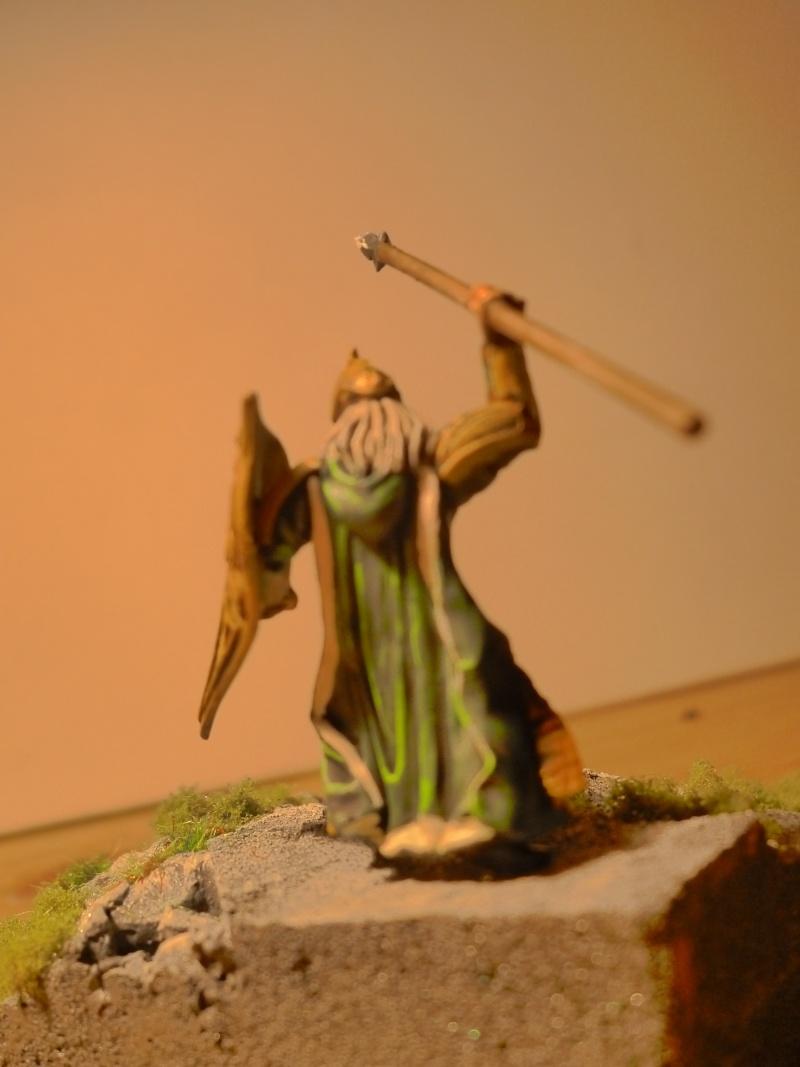 Concours de peinture SdA n°1 : Figurine pédestre P1020714