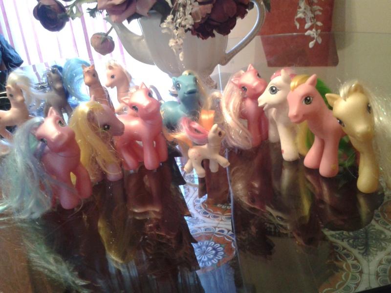 Cerco pony!!! Pony11