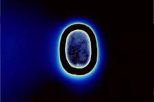 la Vie après la mort prouvé scientifiquement?? 528110