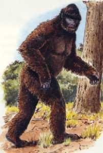 Nous étions là il y a 800 millions d'années Bigfoo10
