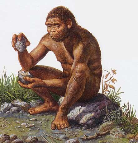 Nous étions là il y a 800 millions d'années Homo_h10