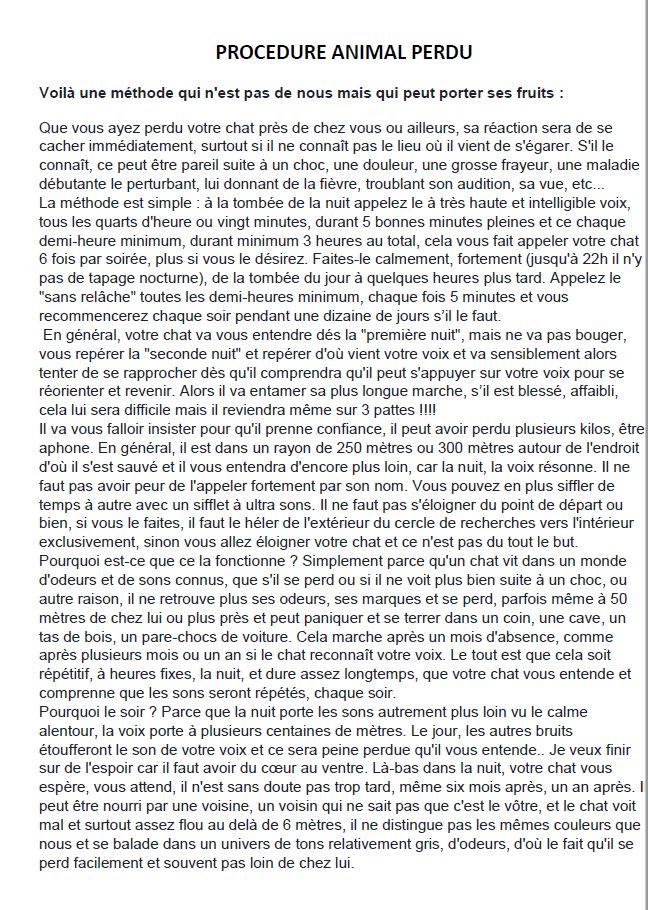 Perdue chatte noire sur Saint Germain Lembron 16557910