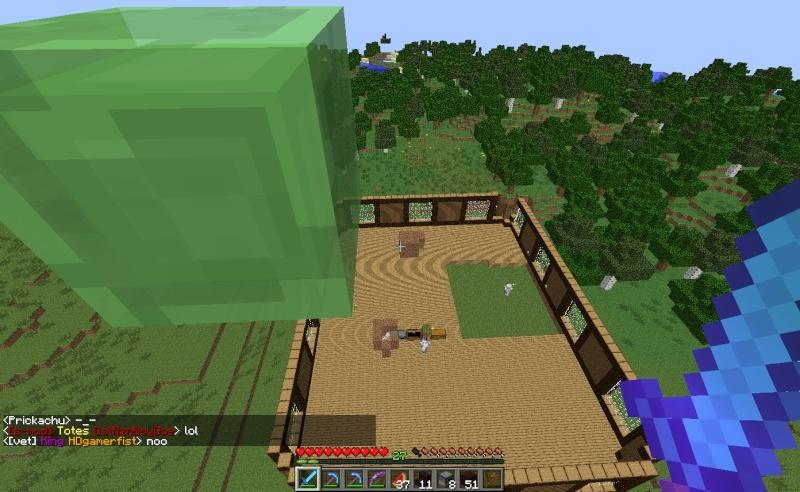 HotRod's Minecraft Photo Journal 2013-013