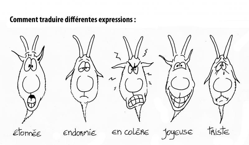 Dessiner des chèvres avec Alain Chrétien Dessin15