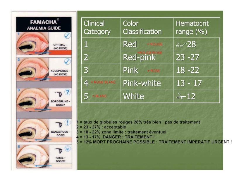 FAMACHA : méthode de traitement sélectif des parasites, solutionner le problème des résistances Famach14