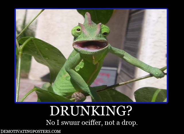 Humorous pictures Drunk-10
