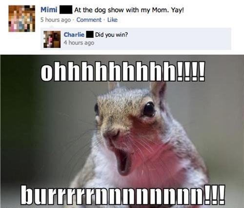 Humorous pictures Funnyb10