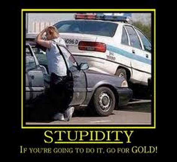 Humorous pictures Stupid10