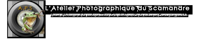 L'Atelier Photo du Scamandre