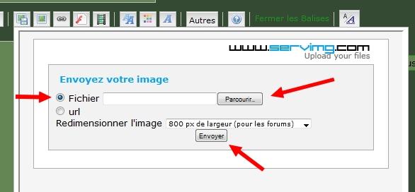 Comment poster une image sur le forum I21010