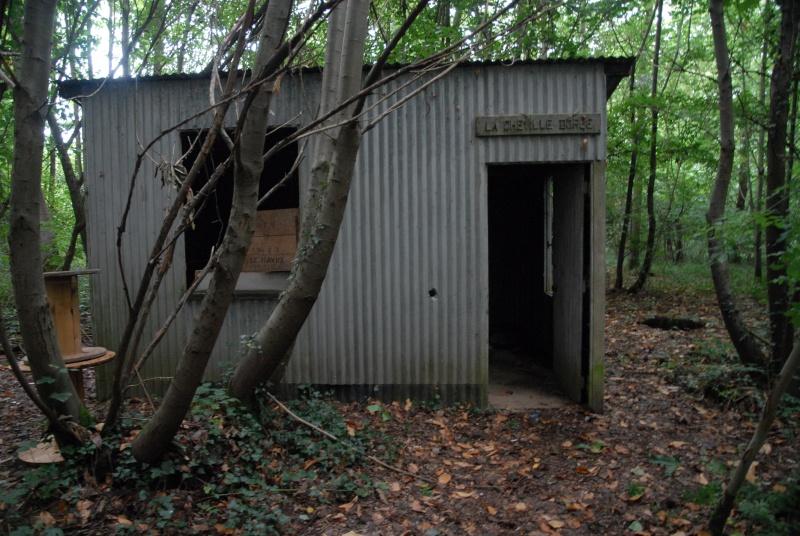 Construction d'abri dans un bois Dsc_9410