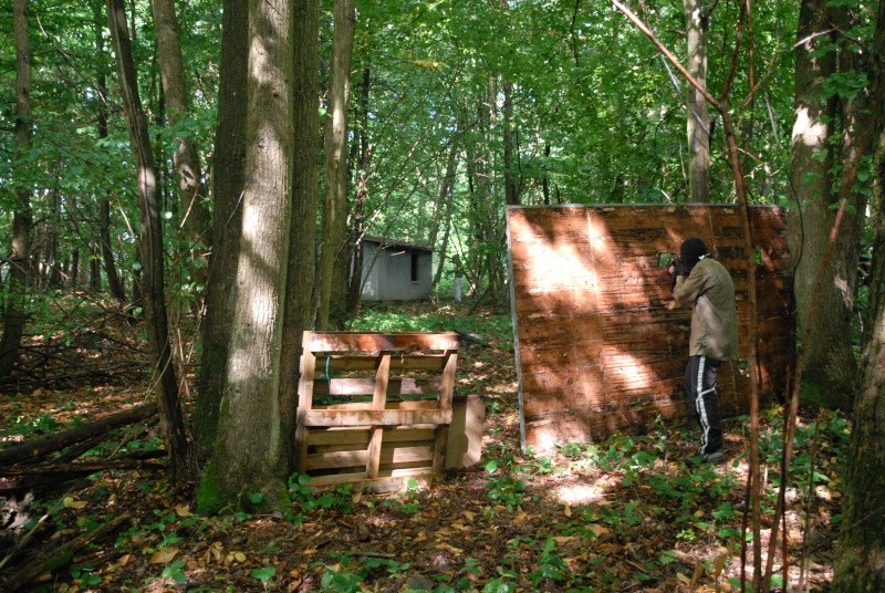 Construction d'abri dans un bois Dsc_9510