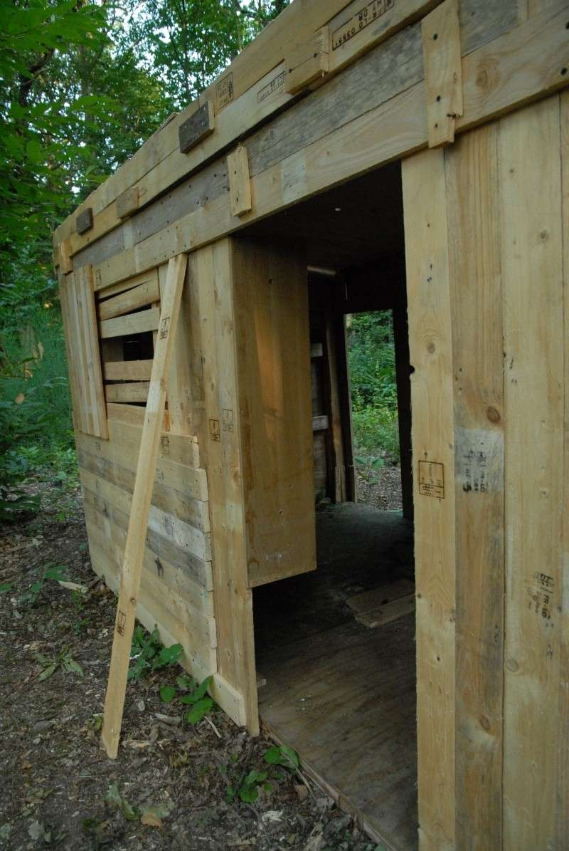 Construction d'abri dans un bois Dsc_9611