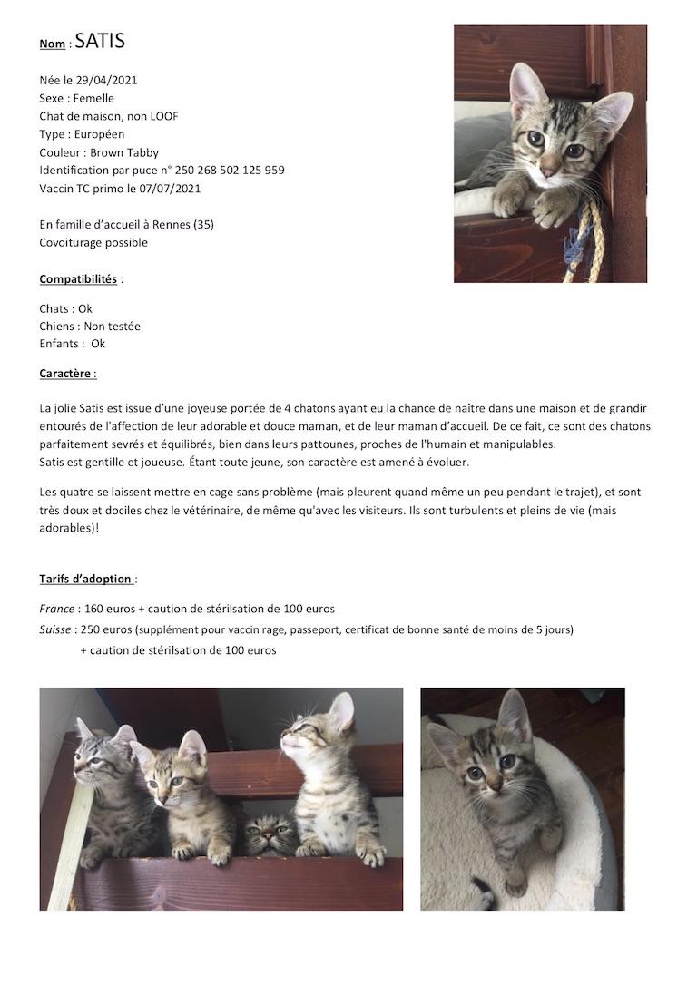 Fiches d'une partie de nos chats adoptables  Fiche130