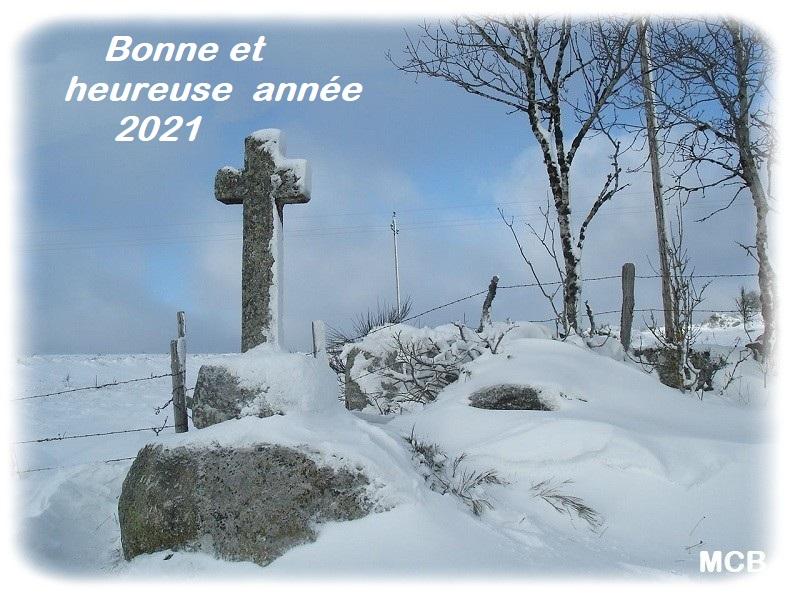 Joyeuses fêtes et bonne année 2021 Dsc09510